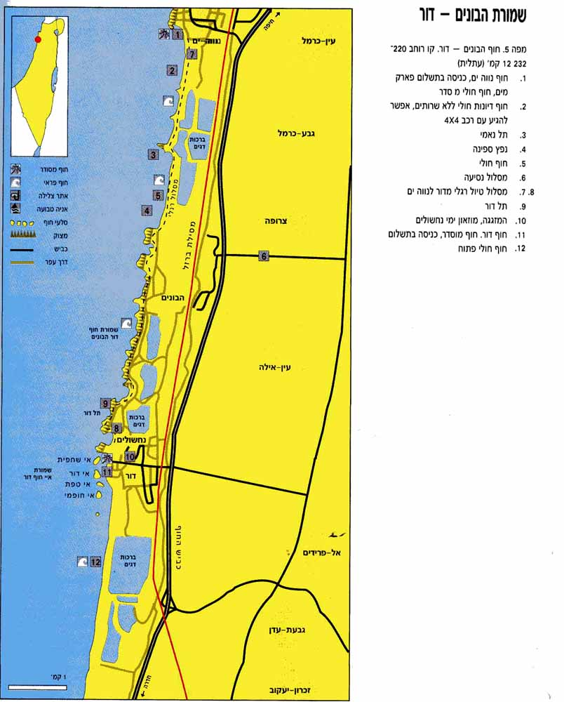 4. חוף דור-הבונים