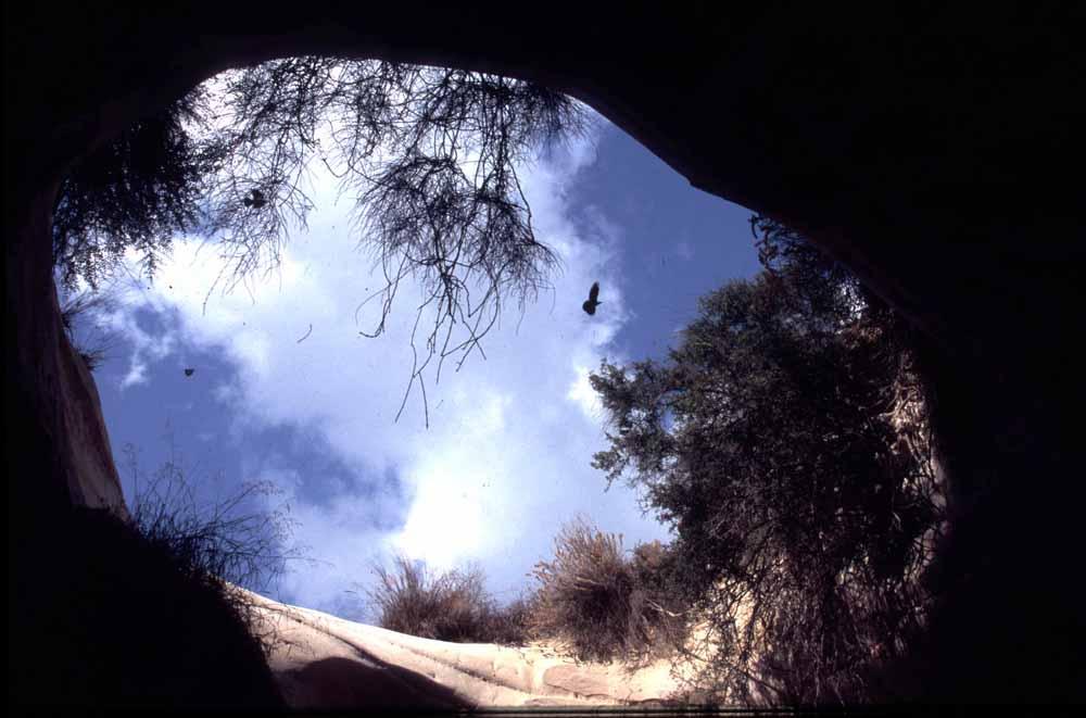מתחת לאדמה – מסע אל מחילות המיסתור